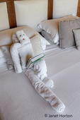 Towel art of towels shaped like a person reading a tourbook.