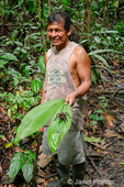Man holding a Giant Black and Red Jungle Tarantula / Black Fire Birdeater Tarantula / Red Bloom Birdeater Tarantula (Pamphobeteus petersi) sitting on a large leaf.