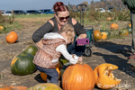 Mother and almost 2 year old daughter at the pumpkin patch, with the girl trying to put a stem back on a pumpkin.