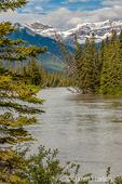 Banff National Park, Alberta, Canada.  Bow River flowing through Banff.