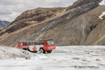Icefields Parkway in Jasper National Park, Alberta, Canada.  Brewster ice explorer snocoach on the Athabasca Glacier.  (For editorial use only)