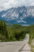 Jasper National Park, Alberta, Canada.  Maligne Lake Road