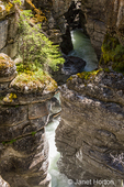 Maligne Canyon near Jasper, Jasper National Park, Alberta, Canada.  The Maligne river flows through the bottom of the Canyon.