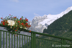 Red Geraniums in a planter on a railing, with a view of Chamonix Mont Blanc snow-covered mountains in the background