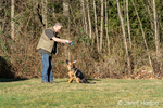 "Issaquah, Washington, USA.  Man teaching his four month old German Shepherd puppy ""Lander"" to first sit before jumping up to get his toy."