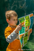 Seattle, Washington, USA.  Six year old boy looking very confused as he tries to figure out where he is on the map at Woodland Park Zoo.