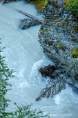 Hike along Johnston Canyon River on the Lower and Upper Falls trail in Jasper National Park, Alberta, Canada
