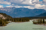 Banff National Park, Alberta, Canada.  Scenic view of the Athabasca River along the Icefields Parkway.