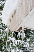 """Issaquah, Washington, USA.  Large dripping icicles hanging from the eave of a home, with about 8"""" of snow above them, with snow-covered conifers in the background."""