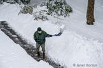 Issaquah, Washington, USA.  Mature man shoveling deep snow in his driveway during a snowfall.
