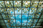 Florence, Italy.  Intricate Stained Glass sky ceiling in Villa Olmi hotel.  It is divided into multiple contiguous light cover panels.