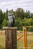 Owl statue in a garden aimed at scaring away birds in Maple Valley, Washington, USA