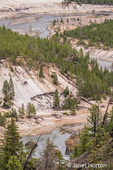 Yellowstone National Park, Wyoming, USA.  Winding Yellowstone River around the Chalk Cliffs landscape.