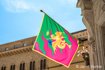 Siena, Italy.  Contrade flag on display.