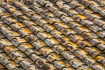 Cortona, Italy.  View of a tile roof from above which is covered in lichen. Roof tiles are designed mainly to keep out rain, and are traditionally made from locally available materials such as terracotta or slate.