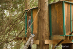 Treehouse in woods on rural property with 13 year old boy, Robert, in it
