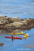 Three kayakers paddling in ocean cove.  One putting on a mask in preparation for tipping the kayak.