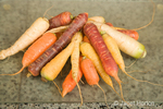 Pile of washed multi-colored carrots on a glass cutting board