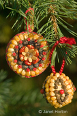 Two Christmas ornament made of corn, seeds and spices glued to a wooden base made by Marilyn Romatka