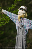 Close-up of scarecrow wearing bib overalls in a garden