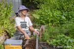 Woman, Linda, taking a break from harvesting her garden at the community pea patch