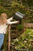 Woman dumping weeds and unwanted plants into a compost pile at a community pea patch garden