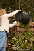 Woman, Barb, dumping weeds and unwanted plants into a compost pile at a community pea patch garden