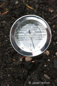 Soil thermometer to measure garden temperature at a community pea patch garden