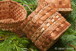 Roll of pliant Western Red Cedar inner bark and three handmade Western Red Cedar baskets woven from strips of inner bark, lying on Western Red Cedar branches