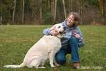 6 year old English Yellow Labrador, Murphy, being affectionate with his owner, Christy