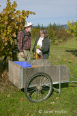 Man and woman holding a cluster of grapes, with bins of grapes in a push cart  at Lucia's Orchards