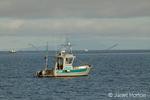 Fishing boats actively fishing