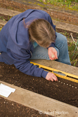 Woman, Kath, planting snap pea seeds into the ground, measuring with the ruler on a level to get proper spacing
