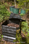 Compost bins at the edge of a forested yard, full of leaves