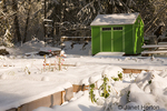 Snow-covered community garden with raised beds and shed 