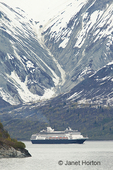 Cruise ship coming out of Tarr Inlet which has the Marjorie Glacier