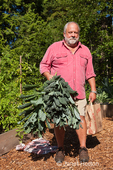 Man holding a dinosaur kale plant he just harvested and a paper sack of other produce in a garden