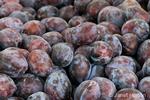 Pile of organic plums