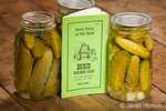 Jars of home-canned dill pickles showing the pickled cucumbers, dill weed, garlic and grape leaves, along with an old pickling cookbook on a rustic wood tabletop