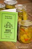 Jars of home-canned dill and sweet pickles showing the pickled cucumbers, dill weed, garlic, red peppers and grape leaves, along with an old pickling cookbook on a rustic wood tabletop