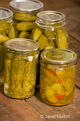 Four jars of dill pickles and one jar of sweet pickles, showing the pickled cucumbers, dill weed, garlic and grape leaves,  on a rustic wood tabletop