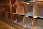 Small, local, independent hardware store with old-fashioned wood bulk nail bins at Madison Park Hardware store