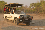 Safari vehicle full of tourists speeding along to find the wildlife action