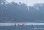 People paddling in four kayaks in Elkhorn slough in early morning with cloudy, stormy weather in Moss Landing State Beach, CA