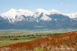 Snow-covered Mission Mountains, Mission Valley and hills covered with Rough Fescue grasses