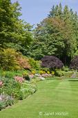 Flower garden and grass in Butchart Gardens