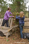 Woman and daughter throwing thinned strawberry plants onto compost pile