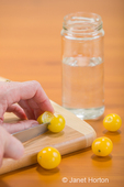 Woman slicing a Gold Nugget cherry tomato on a cutting board, in preparation for saving the seeds, with three Gold Nugget cherry tomatoes and a jar of water on a wood tabletop