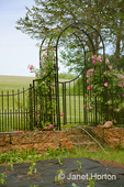 Recently planted pepper garden with black fabric mulch, with sprinker running, in front of rose trellis entrance to garden at a farm near Galena, IL