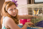 Eight-year old girl feeding alfalfa to her guinea pig in its cage
